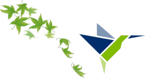 Maple Leaves & Camsa Bird